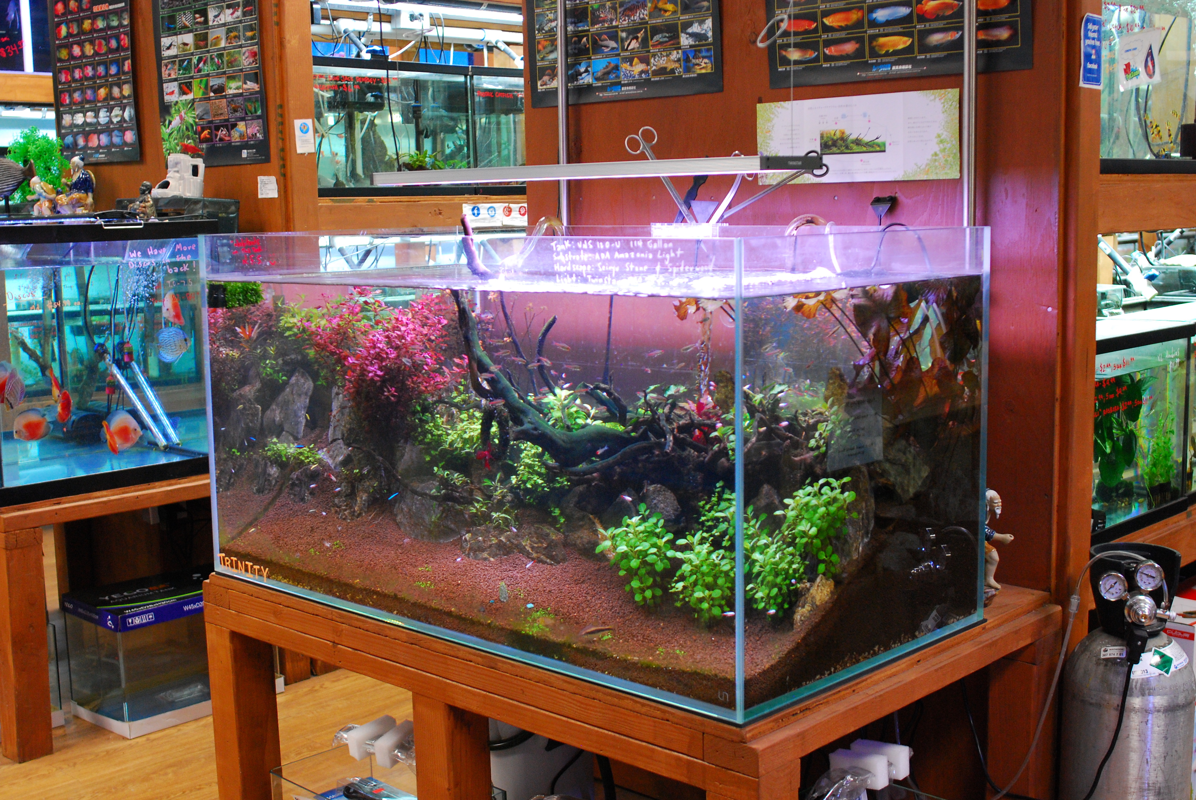 Ultum Nature Systems 120U Rimless Planted Tank