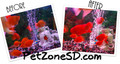 """Red Submersible LED Lighting 42"""""""