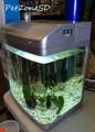 Micro Curved Glass Aquarium - 5 Gallon - Nano Tank!