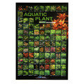 Freshwater Aquatic Plant Poster