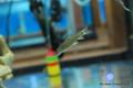 Freshwater Shrimp Food Ocean Nutrition Shrimp Wafers