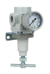 "PneumaticPlus SAR300T-N03BG Air Pressure Regulator 3/8"" NPT with Bracket & Gauge"