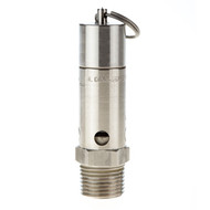 "ASME Hard Seat Stainless Steel Safety Valve 1/2"" NPT"