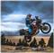 JBI Suspension Pro Valve (KTM 1290 Super Adventure R) Jump Wheelie