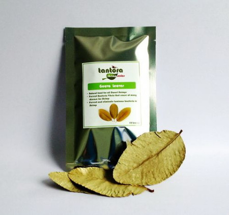 Tantora Guava Leaves (10 count)