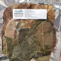 A great mix of Indian Almond Leaves, Mulberry Leaves, Guava Leaves, and Mangrove Leaves your shrimp will love!