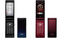 Docomo Fujitsu F-01E High Spec Style Series Phone