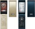 Docomo Fujitsu F-07F High Spec Keitai Phone