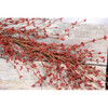 """48"""" Primitive Red Pip Berry Garland"""