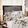 Annie Portabella Floral Ruffled Standard Pillowcase Set