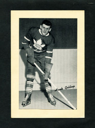 1934/43 HANK GOLDUP BEE HIVE GROUP 1 CORN SYRUP PHOTO MAPLE LEAFS EXMT