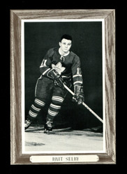 1964-67 BRIT SELBY BEE HIVE GROUP IIII PHOTO MAPLE LEAFS