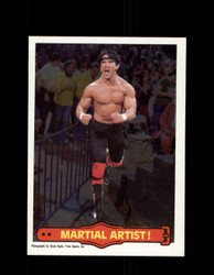 1985 RICKY THE DRAGON STEAMBOAT #16 WWF O-PEE-CHEE MARTIAL ARTIST *G5297
