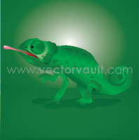 buy vector chameleon against green background