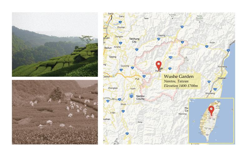 map-tw.jpg