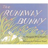 Baby Book - Runaway Bunny