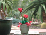 Red grafted cactus plant decorated for valentine's day