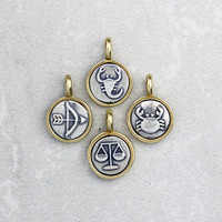 Tiny Silver and Bronze Zodiac Charm