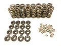 "BTR 2V Spring Kit - .550"" lift - Moly Retainers"