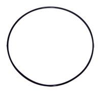 Housing O-Ring