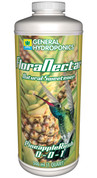 Flora Nectar Pineapple Rush Qt