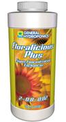 Floralicious Plus 16 oz