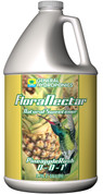 Floranectar Pineapple Rush Gal