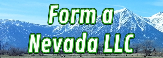 Compare services and prices and form a Nevada LLC the easy way. We have over 20 years experience forming and managing Nevada LLCs. Call us at 888-463-8462.