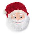Goody Bag: Santa