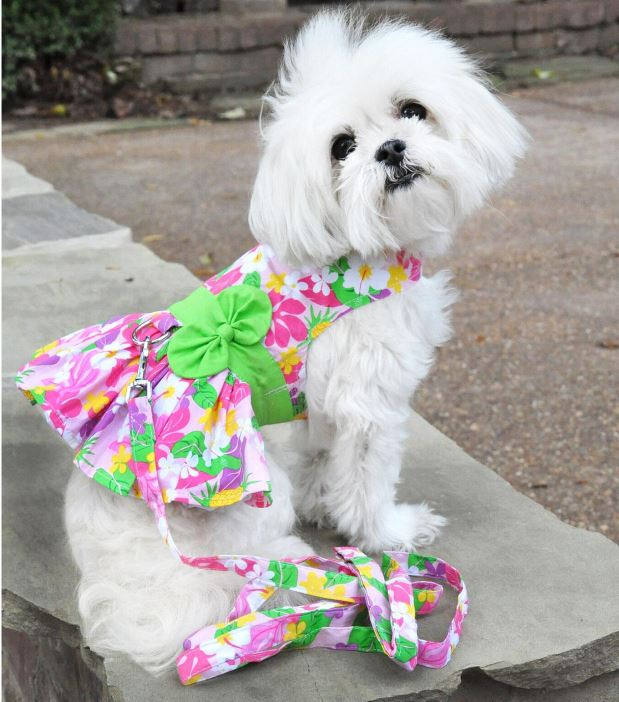 cl-dd-pink-hawaiian-floral-dog-harness-dress-2261-4.jpg