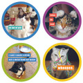 Set of 12 Assorted Funny Party Cat Pulpboard Coasters