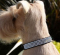 Black Ultrasuede Giltmore 4-Row Swarovski Crystal Collar
