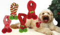 Acrylic Knit Christmas Festive Holiday Pet Dog Scarf