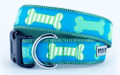 Preppy Bones Blue & Green Premium Ribbon Dog Collar by Worthy Dog