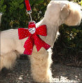 Red Step-In Ultrasuede Stardust Harness with Nouveau Bow & Heart Swarvoski Crystals