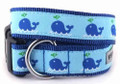 Squirt Nautical Blue Whale Premium Dog Collar by Worthy Dog