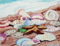 Tile Craft Glossy Sea Shell Cluster Ceramic Art Trivet 6 x 6