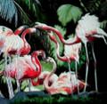 Tile Craft Glossy Flamingo Cluster Ceramic Art Trivet 8 x 8