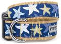 Tropical Blue Starfish  Premium Dog Collar by Worthy Dog