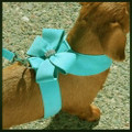 Bimini Blue Nouveau Bow Ultrasuede Dog Harness w Swarovski Crystals