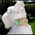 """Tiffi Blue Fantasy Flowers Ultrasuede 1/2"""" Dog Collar w/ Swarovski Crystals"""