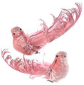 "Set of 2 - 6"" Velvet & Feathered Pink Bird Christmas Ornaments by Regency International"