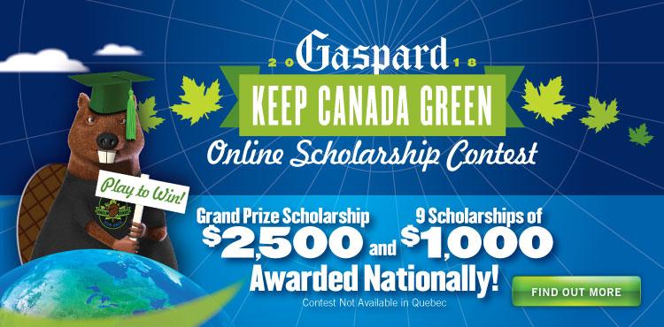 Scholarship Contest