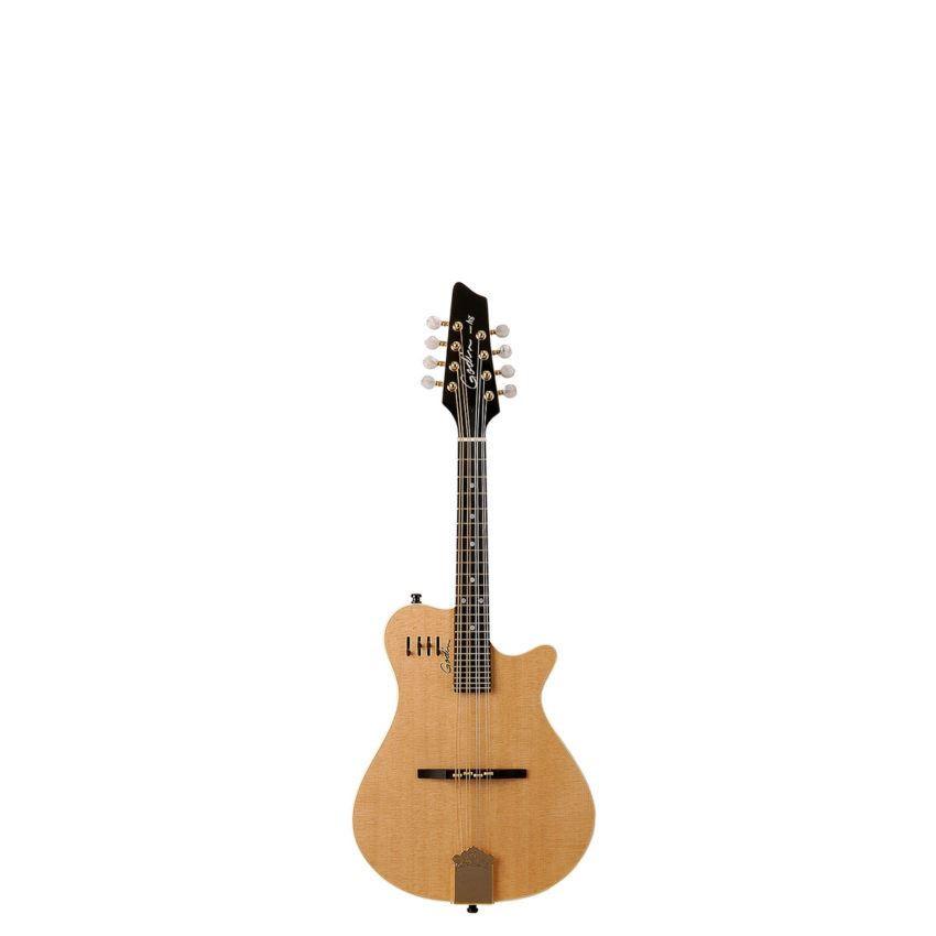 0356c084b3d Godin A8 Mandolin Semi-Gloss - Natural Includes VBGAC Gig Bag ...