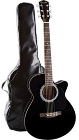 Fender FA 130 Acoustic/Electric Pack With Fender SA-10 Acoustic Amplifier