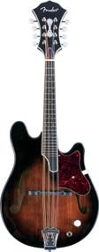 Fender Robert Schmidt Mandolin - Flogging Molly 0955257021