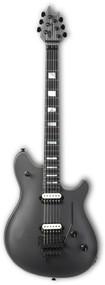 EVH Wolfgang USA Ebony Fingerboard Silver 5107920821