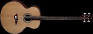 Dean Acoustic/Electric Bass Fretless - GN