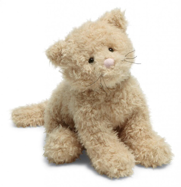 Caffuffle Cat
