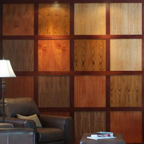 Incredible Library Wall Paneling Wood Panels Decorative Paneling Largest Home Design Picture Inspirations Pitcheantrous
